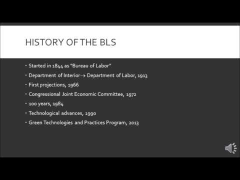 Skylar Smith- The Benefits and Purpose of The Bureau of Labor Statistics