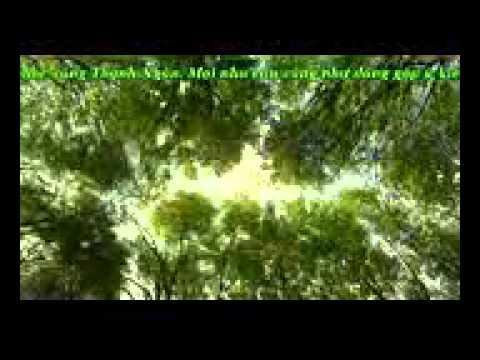 Liên khúc organ Thanh Ngân vol 2 ( 38 mins )