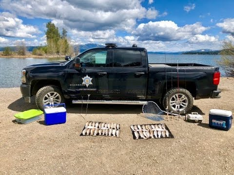 Ca. Trout Poacher Leads DFW On High Speed Chase!