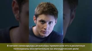 Котлярский, Владислав Юрьевич - Биография