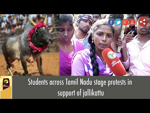 Students across Tamil Nadu stage protests in support of jallikattu