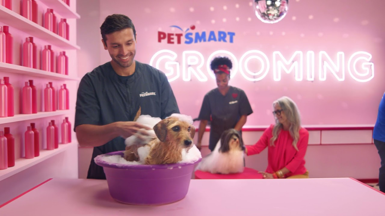Download PetSmart - Anything for Pets Services :30