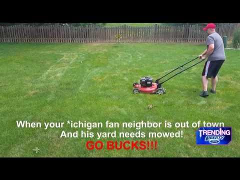 Fox 8 News | Ohio State Fan Mows Michigan Fan
