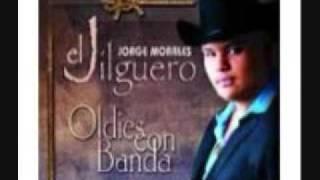 REGRESA A MI JORGE EL JILGUERO MORALES