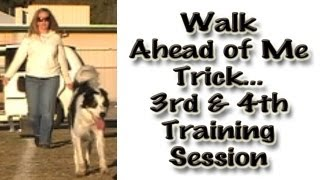 Walk Ahead Of Me: Clicker Canine Freestyle Training