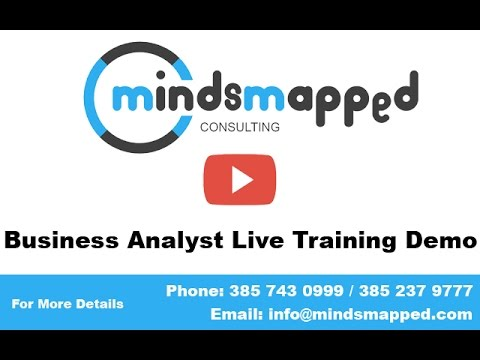 Business Analyst Training_Business Analyst Introduction by MindsMapped (Trainer Praveen)