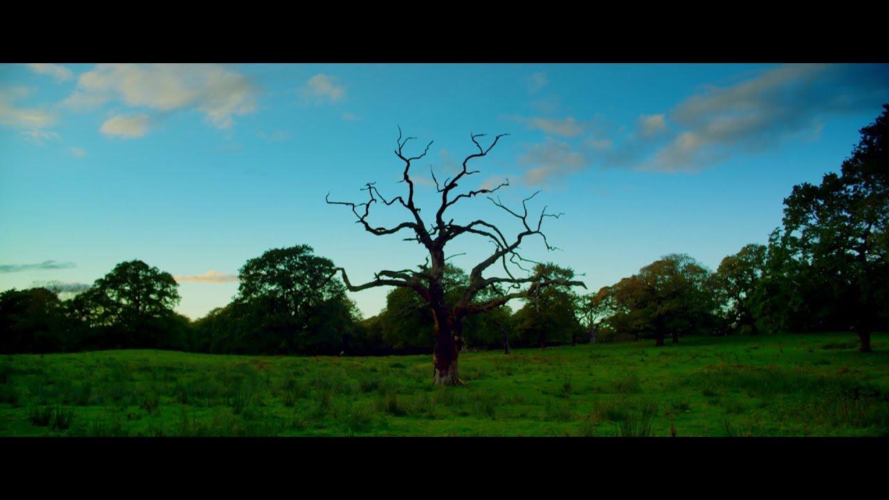 Download Utopia (UK) | Season 1, Episode 5