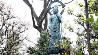 村山取水塔と東大和公園コース