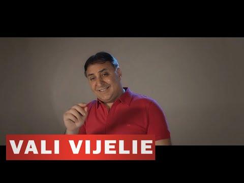 Vali Vijelie - Te-am sunat pe telefon (video ofcial 2017)