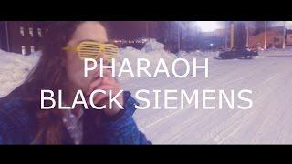PHARAOH - BLACK SIEMENS (PACK OF NOISE COVER)