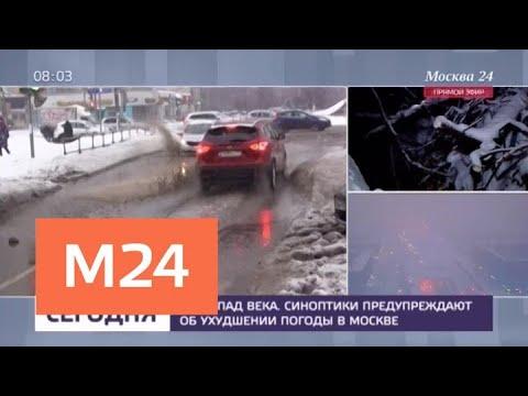 Смотреть Спасатели предупреждают об усилении ветра и гололеде в Москве - Москва 24 онлайн