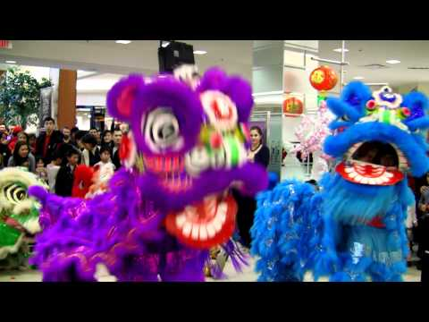 Party Rock Anthem Lion Dance Performance 2