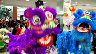 Party Rock Anthem Lion Dance Performance...