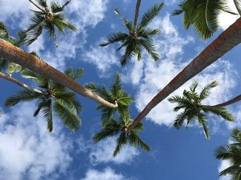Jess & Drew FIJI Holiday Shangri-La's Fijian Resort and Spa