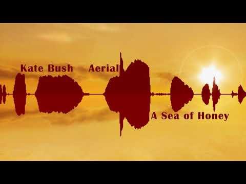 "Kate Bush  ""Aerial "" A Sea Of Honey CD1/2 Full Album HD"