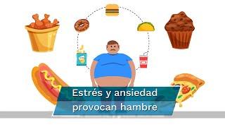 Ante el confinamiento y los periodos prolongados de estrés, el cuerpo genera cortisol, hormona que incrementa la sensación de hambre; expertos recomiendan reducir grasas y azúcares, así como dormir entre siete y ocho horas