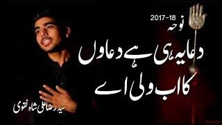 noha dua yahi hai duayo ka ab wali aye syed raza ali naqvi 2017