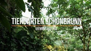 Vienna, Austria, Part 7.3: Tiergarten Schönbrunn (Вена, Австрия, Часть 7.3, Зоопарк Шёнбрунн)