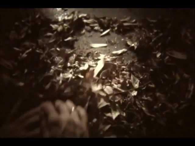 novembers-doom-what-could-have-been-legendado-oliverandrad