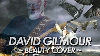 DAVID GILMOUR :PINK FLOYD 『BEAUTY』 COVER All Instrument by miu JAPAN