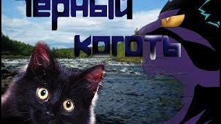 Арт Коты воители. Черный Коготь