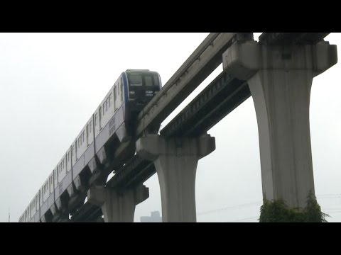 World's Longest Straddle-type Monorail Line Begins Operation in southwest China