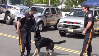 Police Dog Exercise - Bergen County Police Nj New Jersey