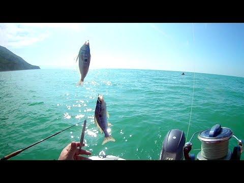 Рыбалка с кастинговой сетью. Основы.
