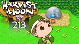Harvest Moon DS [#213]  Die Kehrseite ► Let's Play [Deutsch|HD]