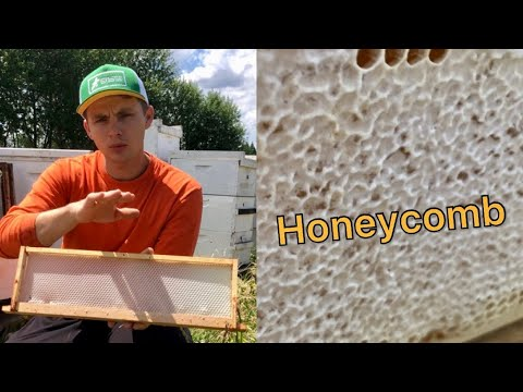 Honeycomb. How To Set-up Frames For Cut Honeycomb Squares