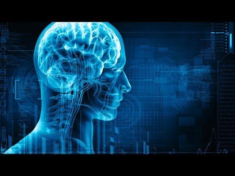 अपनी दिमाग और स्मरण शक्ति को कैसे तेज़ करें - How to Increase Memory Power and Intelligence
