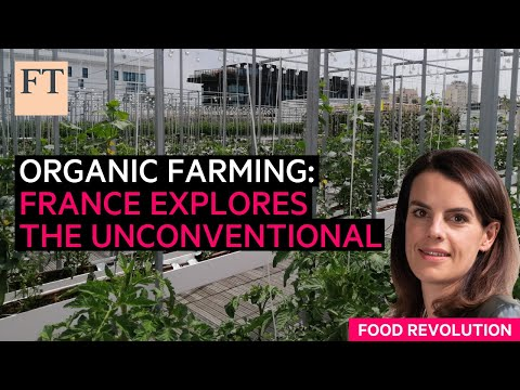 French organic farming explores the unconventional | FT Food Revolution