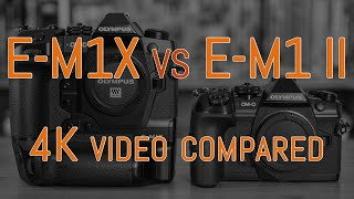 Olympus OM-D E-M1X vs E-M1 II - 4K Video Comparison (with commentary)