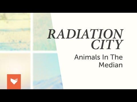 Radiation City - Animals in the Median (Official Full Album Stream)