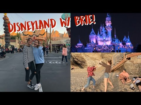 Beach Day, Disney Day With Brie & Unboxing Beauty Box! (Vlogmas 18-19)