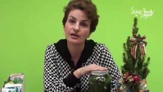 """Как выращивать огурцы чтобы всегда быть с урожаем. Сайт """"Садовый мир"""""""