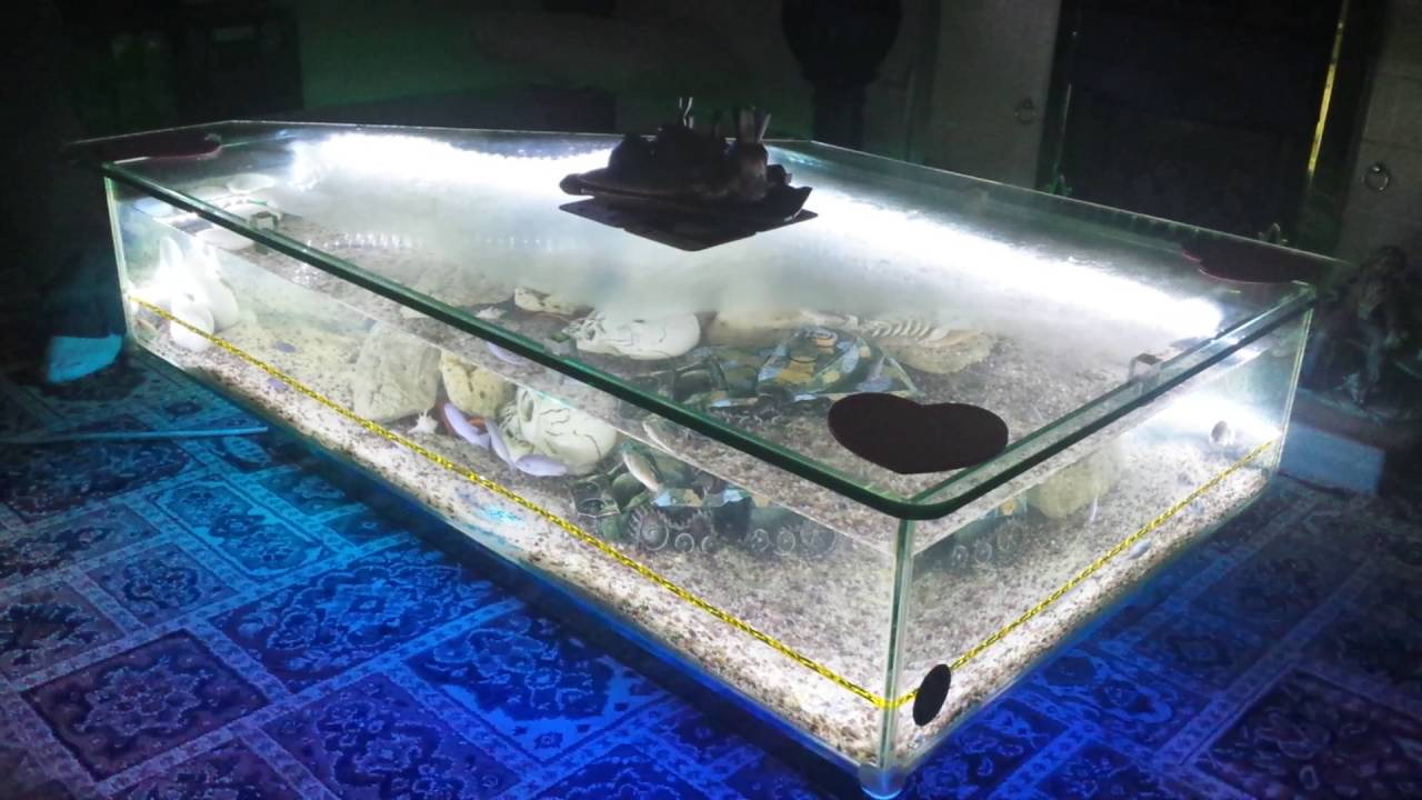 Coffee table aquarium - YouTube