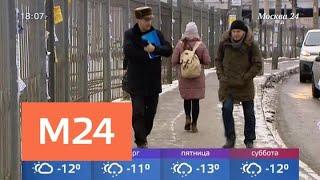 Крещенские морозы с опозданием придут в столицу - Москва 24