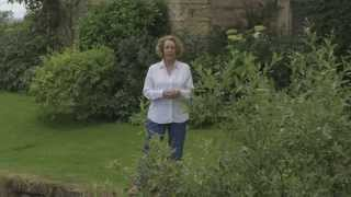 Philippa Gregory introduces The King's Curse