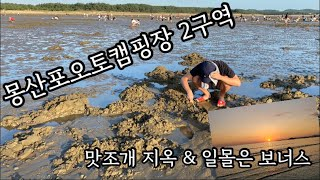 [캠핑vlog]캠핑하러 왔다가 갯벌체험 | 몽산포오토캠…