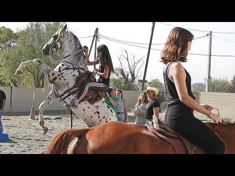 Stunt Women Team Horse Riders