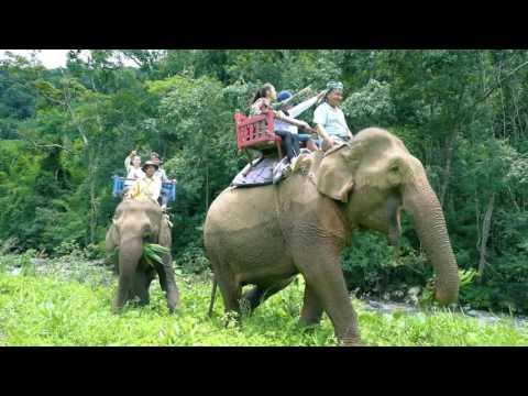 Namkat Yorlapa Resort Hotel Spa Oudomxay Laos