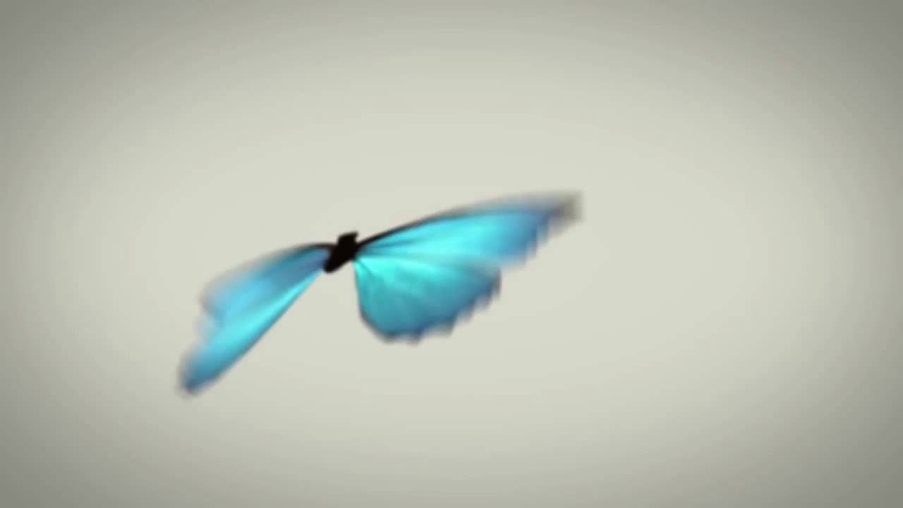 AFTER EFFECTS TUTORIAL - Animate Butterfly