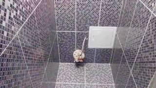 Туалет-стены пол плитка.(, 2016-09-04T07:12:37.000Z)