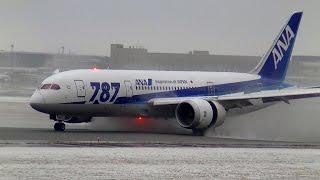 ✈ANA B787 JA817Aの凄いスラストリバーサー(新千歳空港)