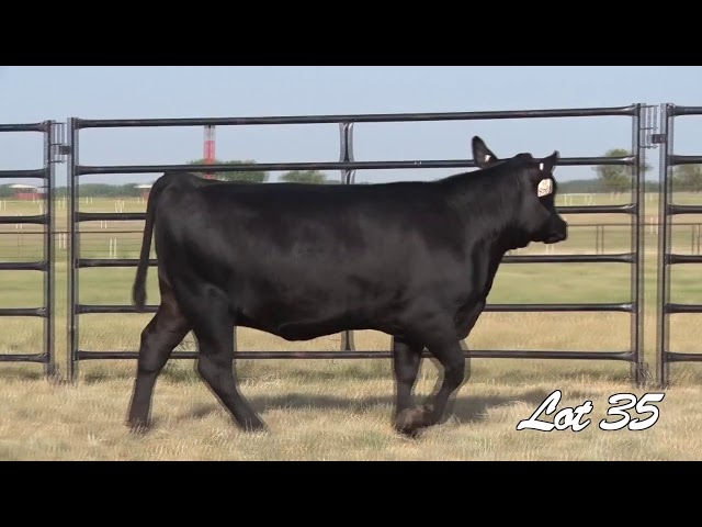 Pollard Farms Lot 35