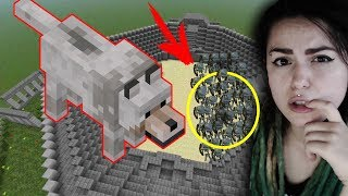 1000 СКЕЛЕТОВ ПРОТИВ 1 ВОЛКА | 1000 SKELETONS VS 1 WOLF #Minecraft