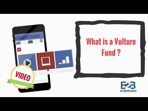 What is a vulture fund ?