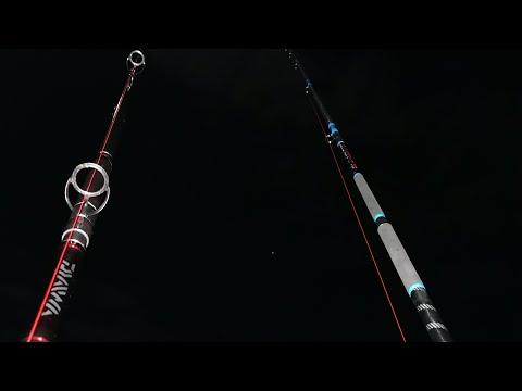 Spot Of Night Fishing