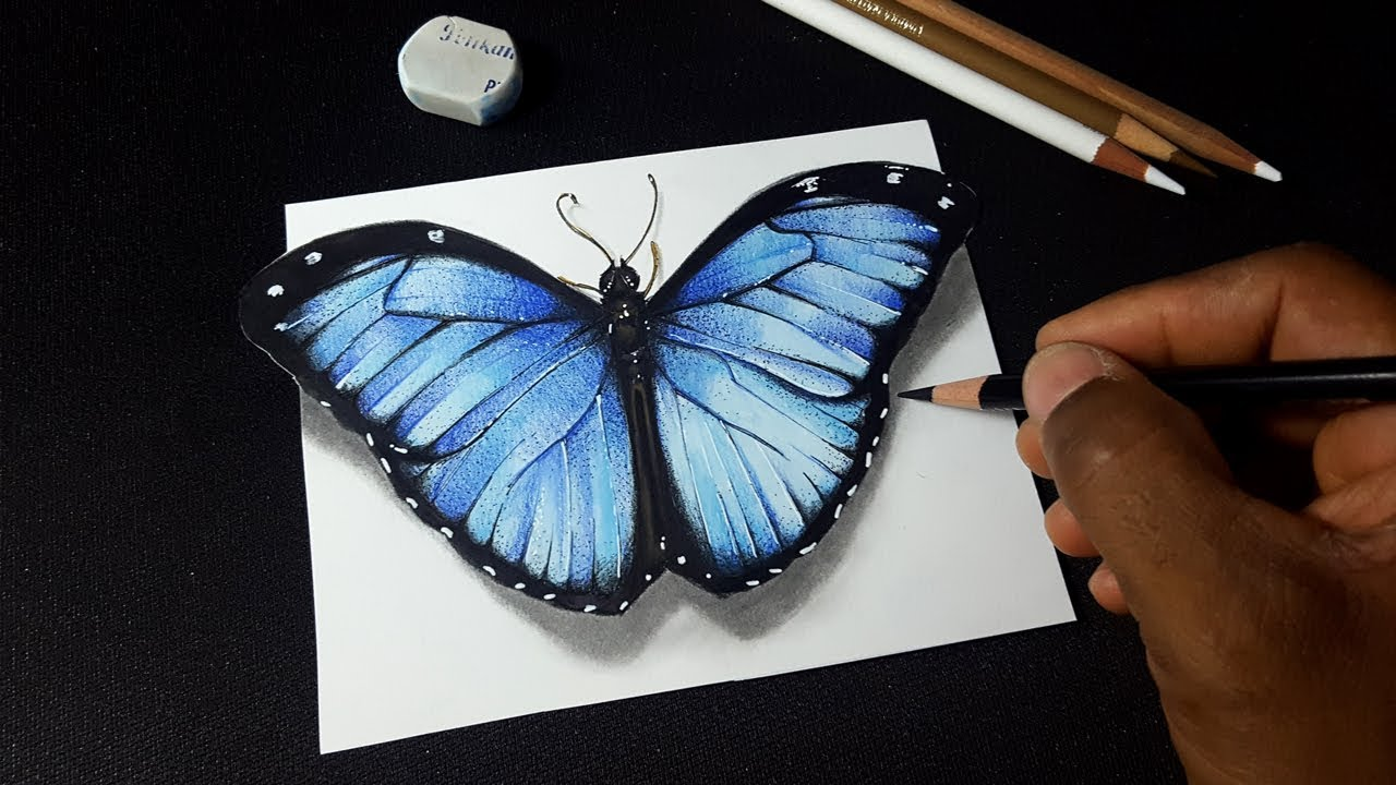 How to draw 3d realistic butterfly amazing 3d art
